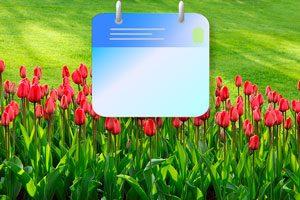 Organiza tus tareas anuales de jardinería con esta agenda