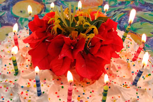 Cómo organizar un cumpleaños para gemelos