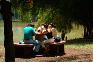 Consejos e ideas para organizar un día de campo en familia