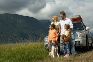 Consejos para preparar a la mascota para un viaje