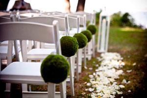 Una boda natural: bases y organización