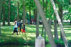 Detalles para planificar una excursión con niños