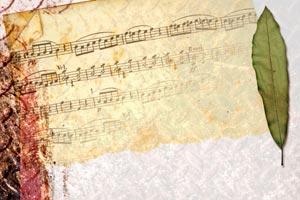Consejos para elegir la canción de inicio de un evento y la iluminación