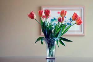 Qué flores elegir para decorar en cada estación del año