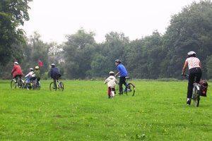 Ideas para hacer actividades en familia